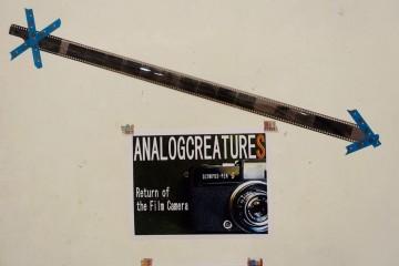 ANALOG CREATURES展示の様子1