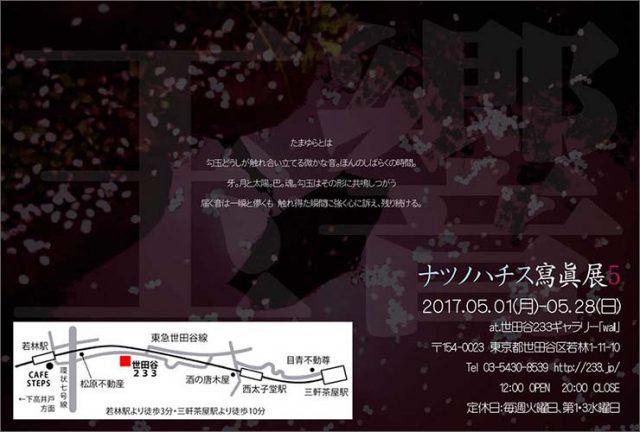 ナツノハチス寫眞展5 【tamayura -玉響-】 2017年5月1日(月)-5月28日(日)